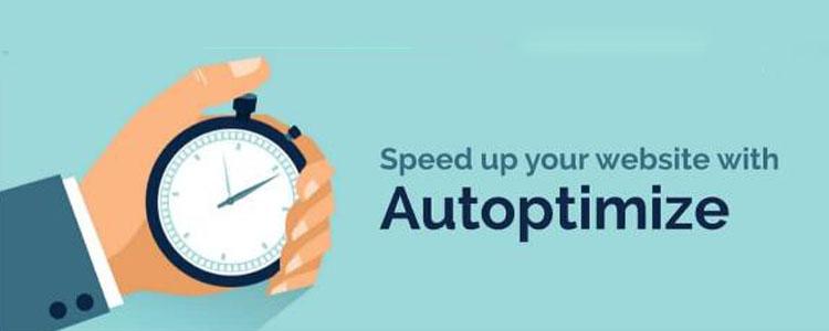 外贸自建网站速度优化插件Autoptimize