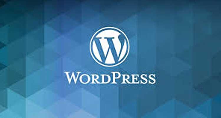 外贸建站基础课程---wordpress