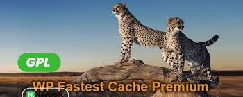 网站速度优化必备加速插件 WP Fastest Cache
