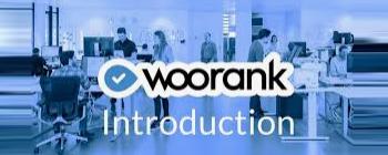 外贸建站SEO检测必备工具Woorank