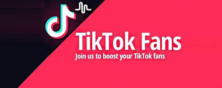 TikTok粉丝购买指南