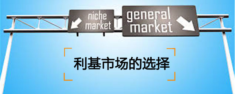 how to choose niche market